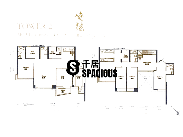 Ngau Chi Wan - Aria Kowloon Peak Floor Plan 48